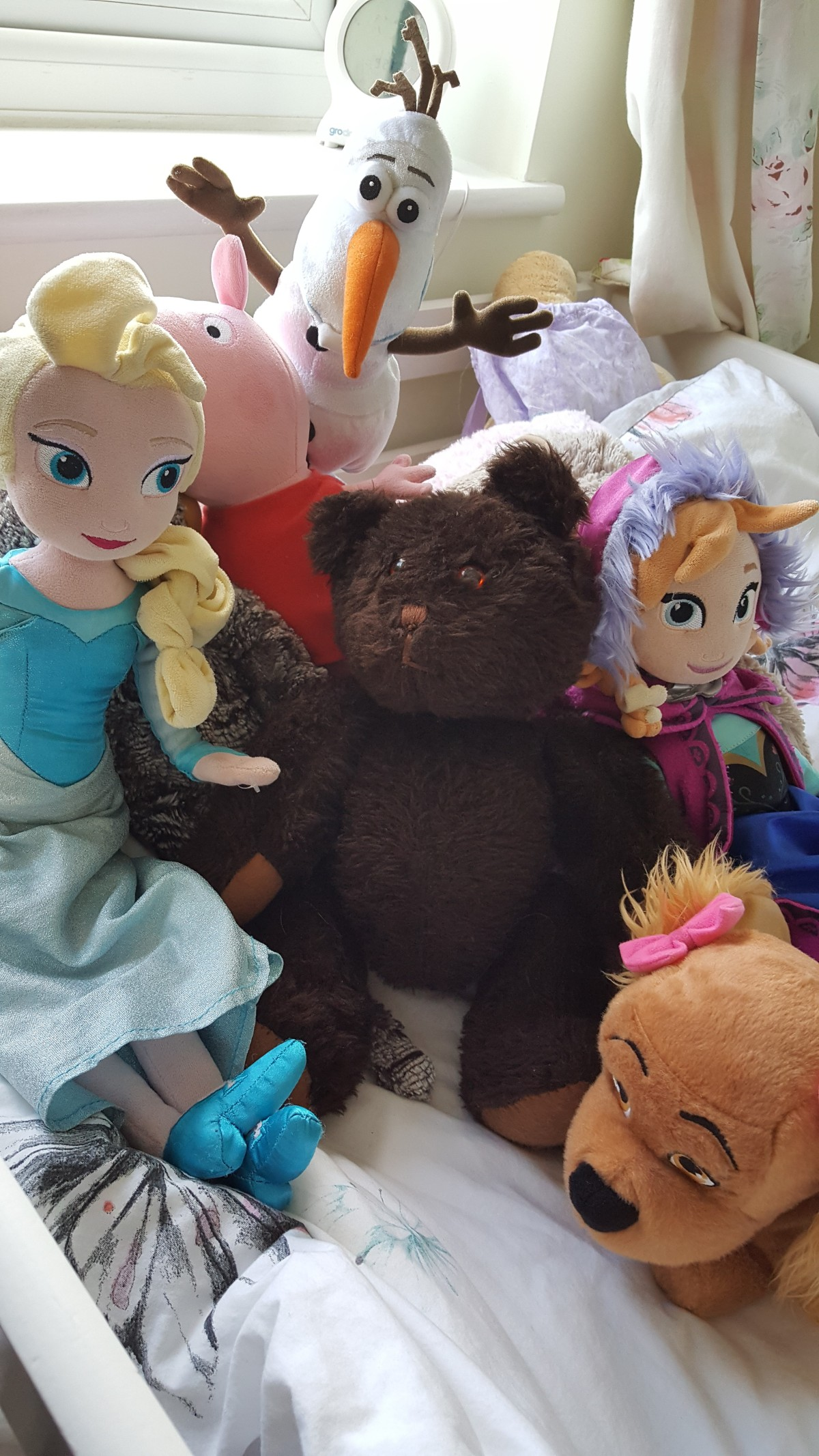 When the travelling bear came to stay (the grown upversion)
